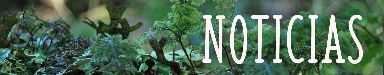 Banner_noticias.jpg